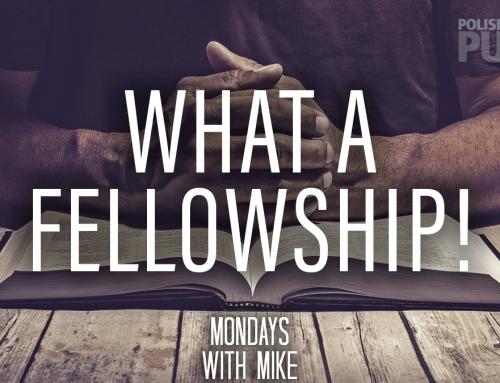 What a Fellowship!